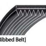 Ribbed Belts